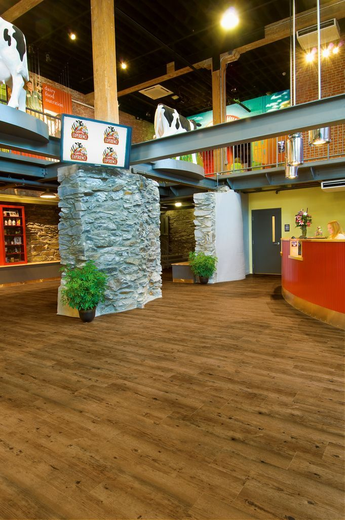 Darker Wood Look Floors Were Chosen For The Foyer Of The Turkey Hill  Experience In · Dental Office ...