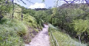 Diamond Head Crater Park trail map 3.23 miles @iFit @NordicTrack @ProForm @Tamara Stephenson