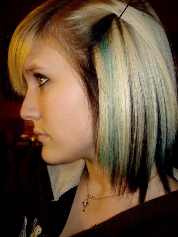 Blonde Hair Black Underneath Short Style Hair