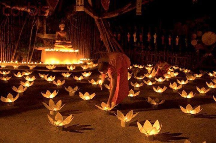 No one saves us but ourselves. No one can and no one may. We must walk the Path.--Buddha