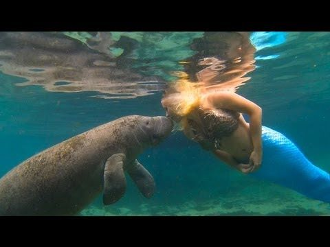 Real Life Mermaid Melissa raises awareness for Manatee Protection.....Magnificent & heartwarming images, just so very precious.
