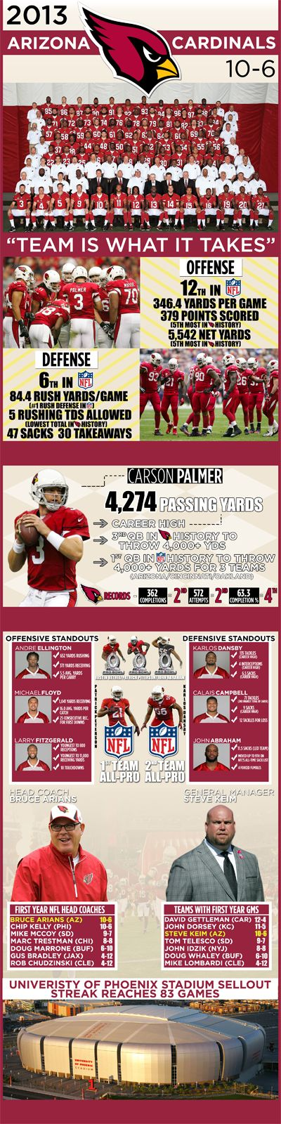 Arizona Cardinals 2013 Season Infographic