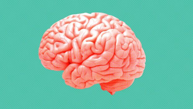 How Your Brain Reacts To Change    Fast Company   Business + Innovation