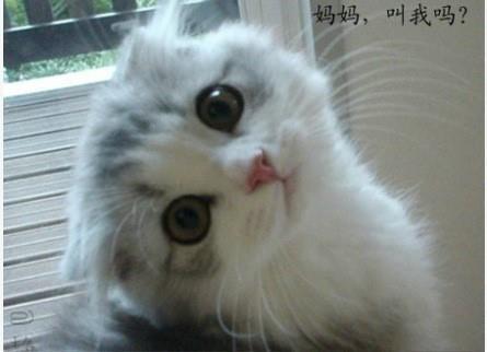 wwaaahhhh I want a little baby!!!