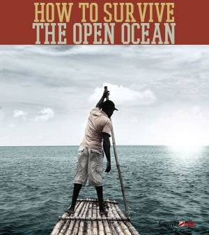 SURVIVAL SKILLS: Could You Survive The Open Ocean?