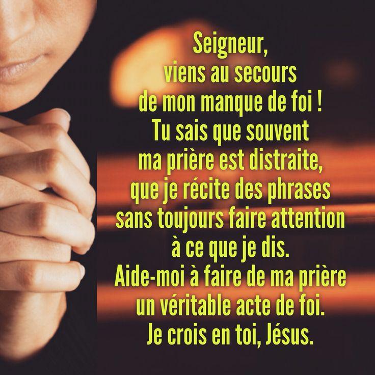 Dialogue avec le Christ Seigneur, viens au secours de mon manque de foi ! Tu sais que souvent ma prière est distraite, que je récite des phrases sans toujours faire attention à ce que je dis. Aide-moi à faire de ma prière un véritable acte de foi. Je crois en toi, Jésus. Résolution Chaque fois que je prie le « Notre Père », essayer de le faire avec plus de foi. — Père Jean-Marie Fornerod, LC #regnumchristi #augmentemafoi #jecroisentoiseigneur #didijeremie