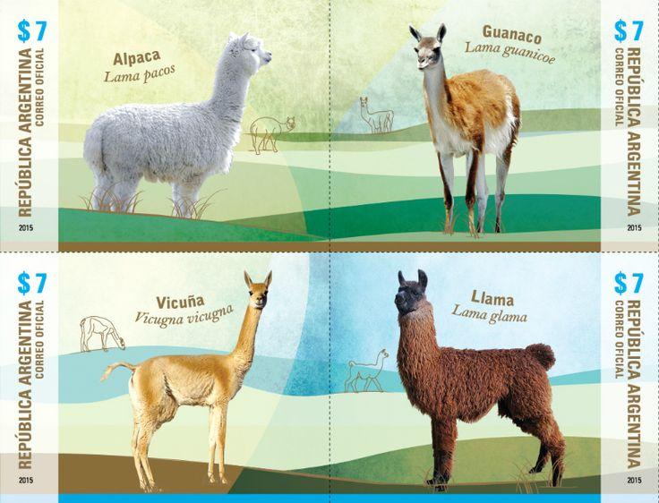 COLLECTORZPEDIA Llamas - Alpaca, Guanaco, Vicuna, Llama