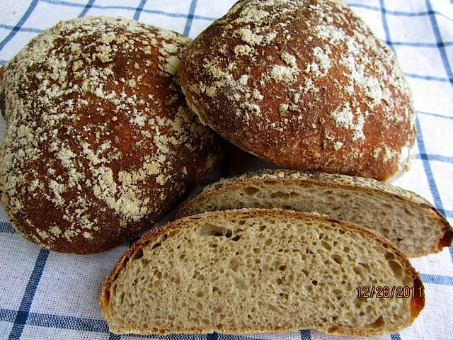 Alsatian Beer Bread: http://www.thefreshloaf.com/node/26559/pain-%C3%A0-la-bi%C3%A8re-alsatian-beer-bread
