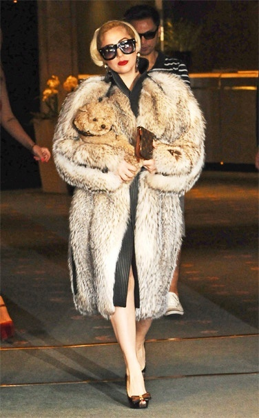 Fur is a classic that has never fully left the fashion scene.  It's presence in apparel has been changed and altered since it's main introduction in the early 1900's.  Lately it has been seen in oversized pieces like this one here. Brenna L.