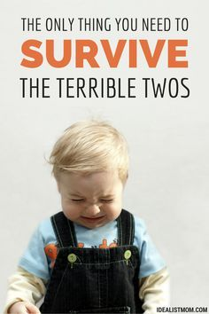 "The Only Thing You Need to Survive the ""Terrible Twos"" - With Your Sanity Intact"