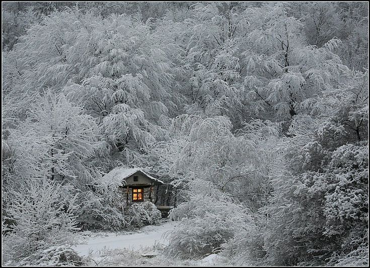 winter refugeWinter Cabin, Little Cabin, Snow, Winter Wonderland, Places, White House, Landscapes Photography, Fairies Tales