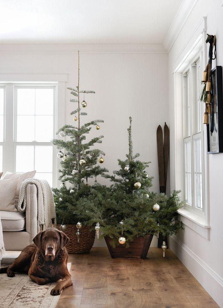 Simple farmhouse Christmas decorating • boxwoodavenue.com