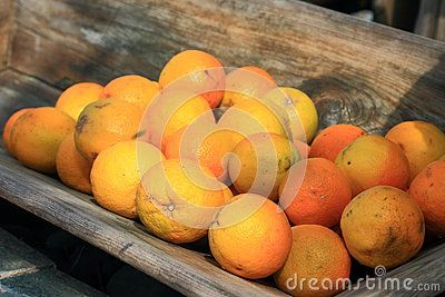 Oranges in old wooden trought
