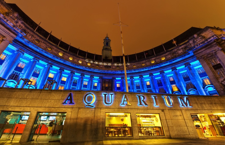 London Aquarium from #romanbetik at http://www.stillglimmers.com/, All my photos are licensed under Creative Commons, Non-Commercial.