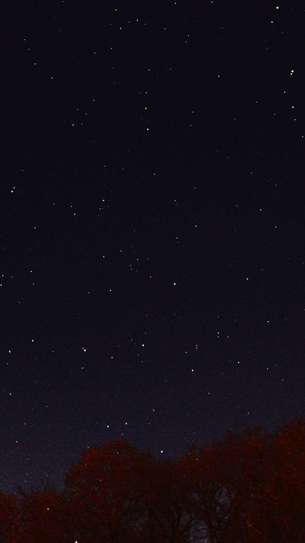 papers.co-nc26-night-sky-dark-star-lights-tree-nature-33-iphone6-wallpaper