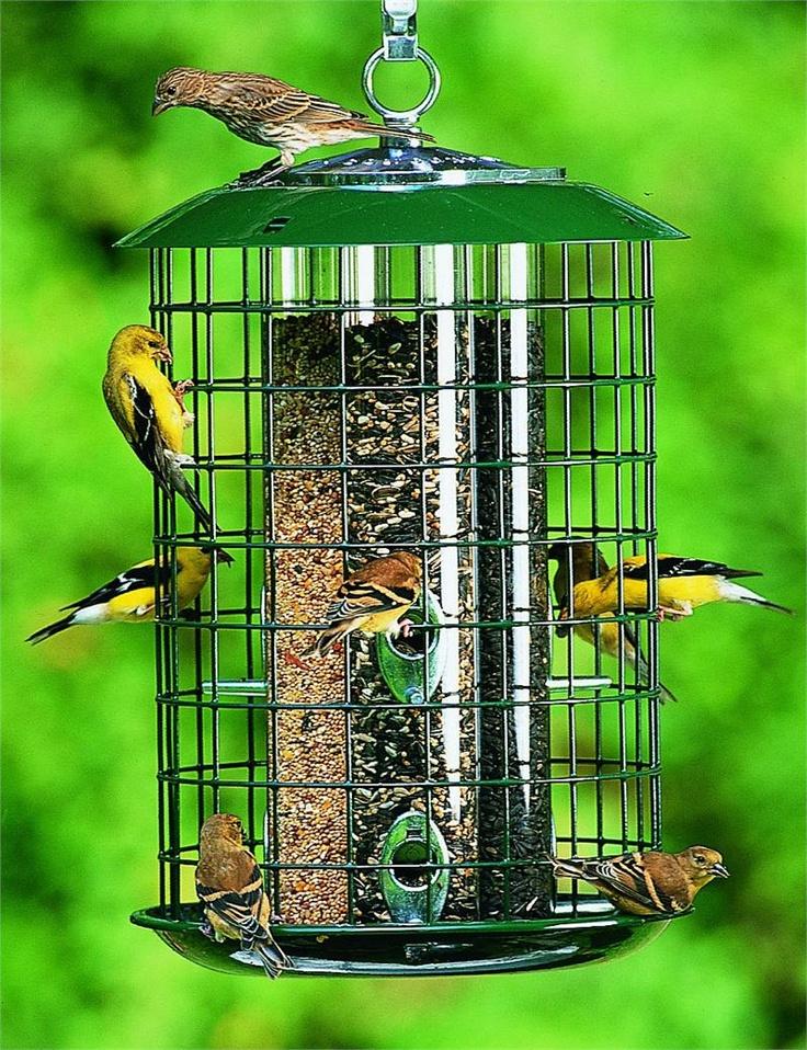 design feeders page ideas houses birdcage unique part feeder bird