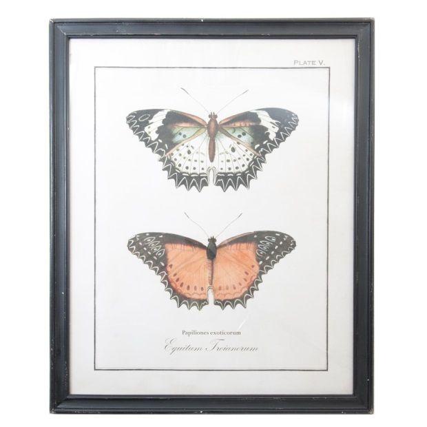Clayre & Eef Schilderij Kunststof Zwart 65 x 80 cm - 2 Vlinders - afbeelding 1