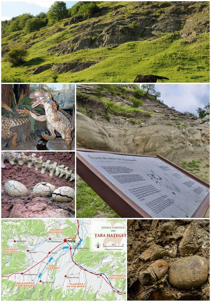 Geoparcului Dinozaurilor din Tara Hategului.