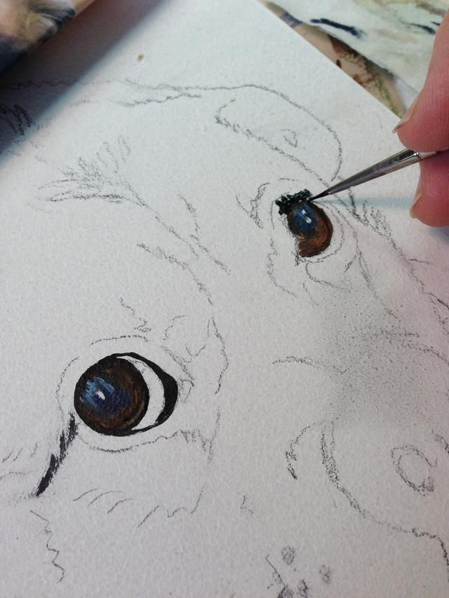 It's fun to paint the eyes first and have the eyes looking back at me for the rest of the painting.