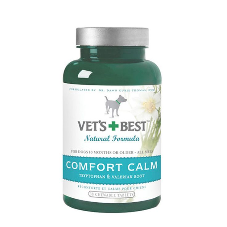 Dramamine For Dogs Anxiety