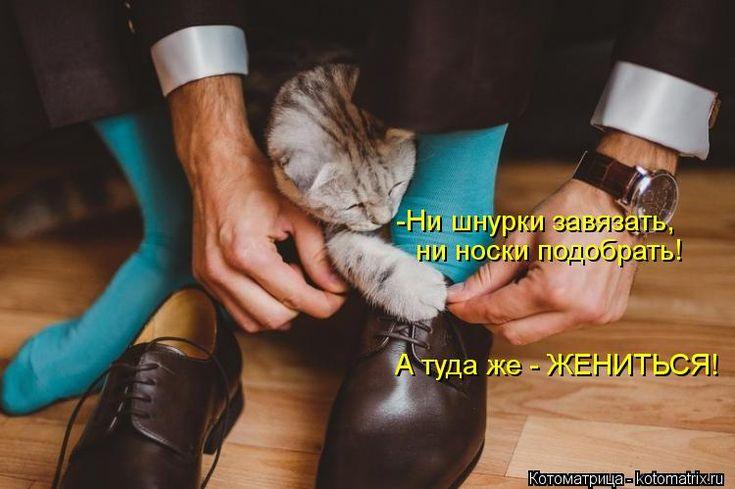 -Ни шнурки завязать, ни носки подобрать! А туда же - ЖЕНИТЬСЯ!...