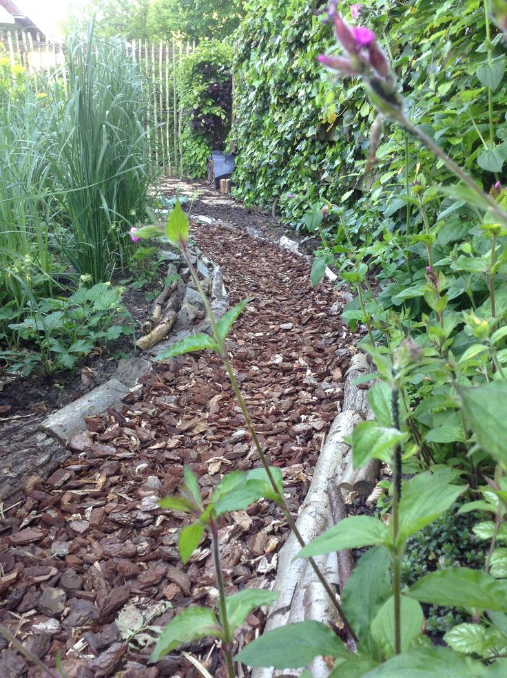 Door siergras te planten naast het pad van boomschors en houtblokken, ontstaat er een verborgen pad.