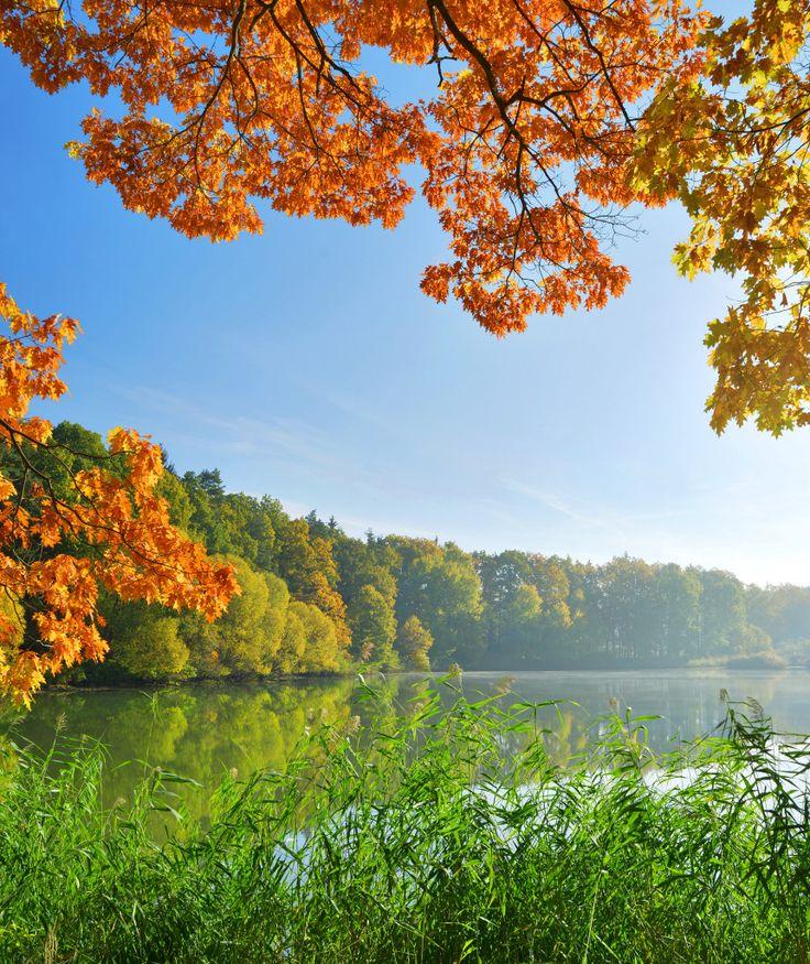 Autumn landscape in Czech Republic