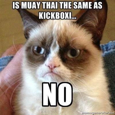 Just no. :) Muay Thai America