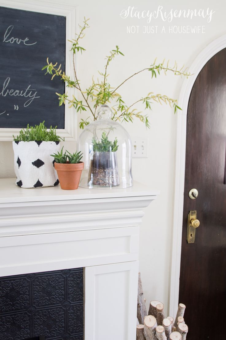 Fireplace Mantel With Plants Living Room Pinterest Mantels Fireplaces And Hanging Air Plants
