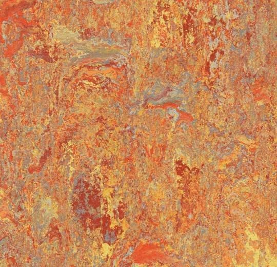 "Asian Tiger 79"" Wide Marmoleum Vivace"