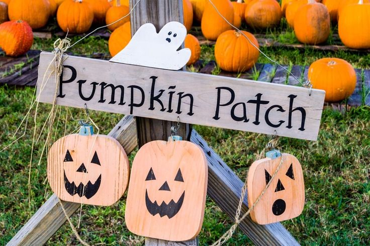 Here's a list of popular Kansas City pumpkin patches, corn mazes & hayrides, which will begin opening in mid-September. Some offer coupons or discounts (see below). I'm sure I missed a few, but can always add them later. If you know of any I missed, please leave a comment below. If you're not doing this already, you can subscribe …