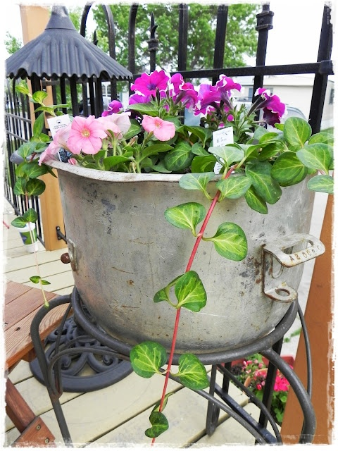 A Southern Belle With Northern Roots Unusual Planters Pt1