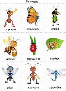 mikapanteleon-PawakomastoNhpiagwgeio: Τα έντομα στο Νηπιαγωγείο
