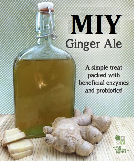 Ginger has been used for thousands of years by the Chinese and is known to have many healing properties by almost all cultures in most countries.