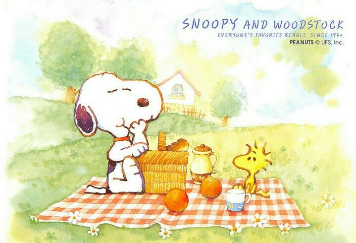 Pin by Julie Bennett on Snoop Dawg   Snoopy, Snoopy love