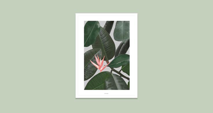 Vontrueba Veggie A3 Art Print | A Splash Of Colour