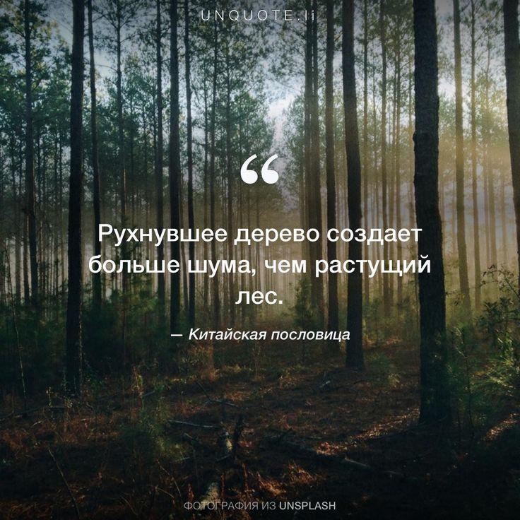 Рухнувшее дерево создает больше шума, чем растущий лес. ‒ Китайская пословица @unquoteli