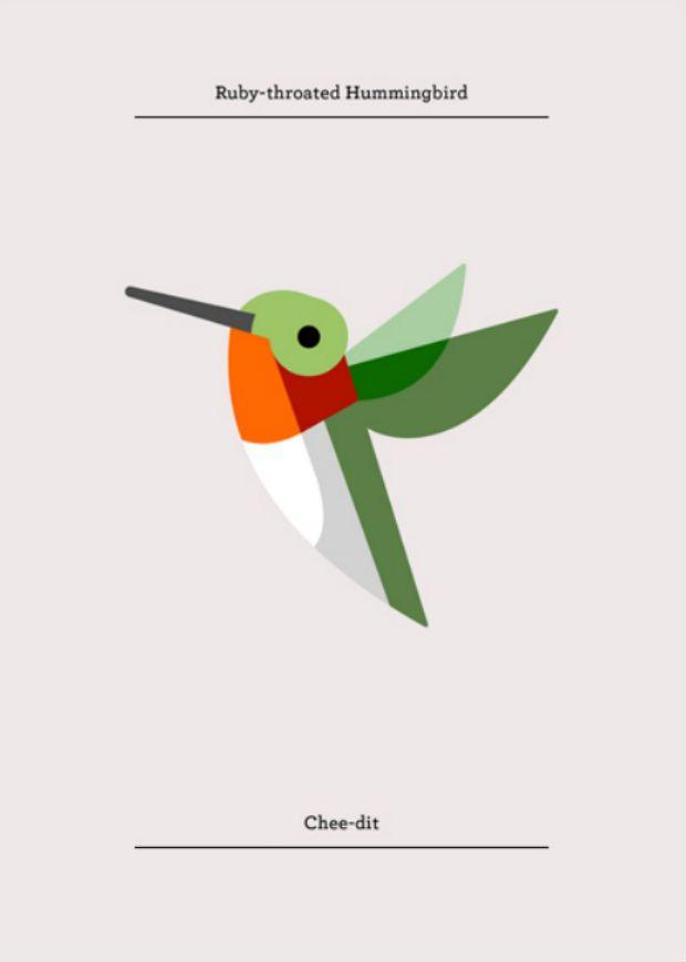 Josh Brill é um artista claramente influenciado pela natureza. Suas ilustrações exploram e catalogam diversos tipos de plantas e animais de todo o mundo.