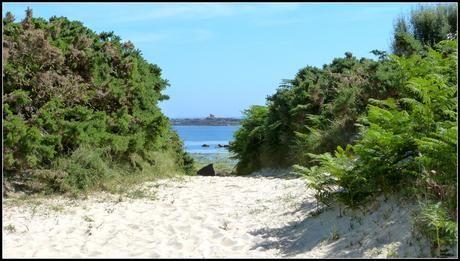 Île Callot : Le paradis breton qui se dévoile au rythme des marées