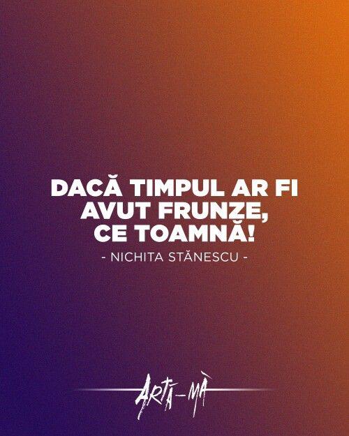 """""""Dacă timpul ar fi avut frunze, ce toamnă!"""" - Nichita Stănescu"""