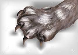 Image result for a clay model of a paw