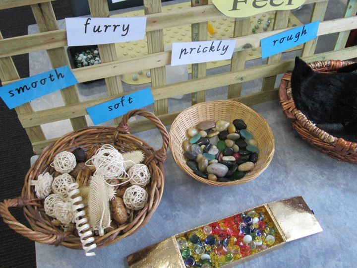 "Exploring texture at St Paul Apostle North Primary School... image shared by Walker Learning Approach: Personalised Learning ("",)"