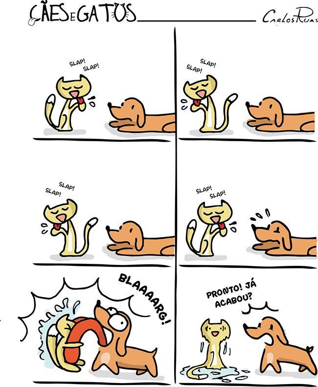 Cães e Gatos – Aflição