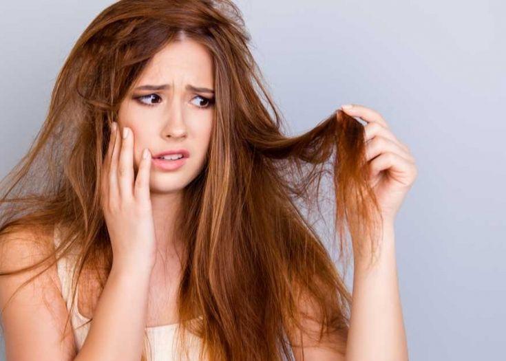 O que Fazer para o Cabelo Crescer Rápido | Fazer o cabelo, Fazer o cabelo crescer, Perfume para cabelos