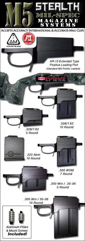 "M5 Stealth DM M24 Detachable Magazine System, this on a 16"" barreled Remington 700 with an aimpoint, sling and light would make a great gun"