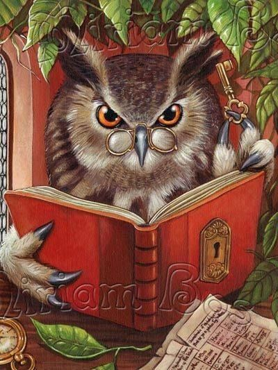 wise owl by Miriam Bos