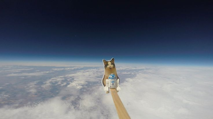 Two Young Sisters Launch a Balloon Carrying a LEGO R2-D2 and a Picture of Their Cat to the Edge of Space