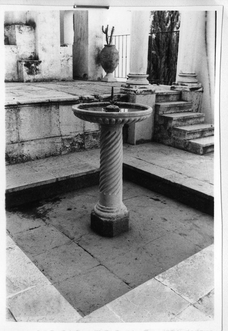 Las plantas originales que ocupaban los tinajones del #jardín eran cactus. #zoomMW #MuseumWeek