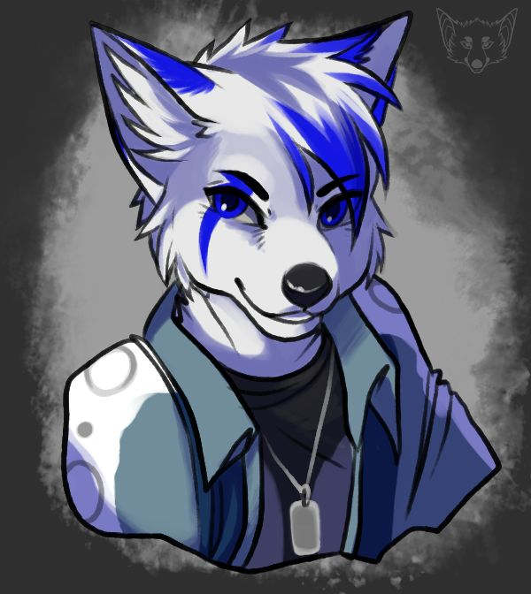 Anthro Arctic Wolf 60 best Furry images o...