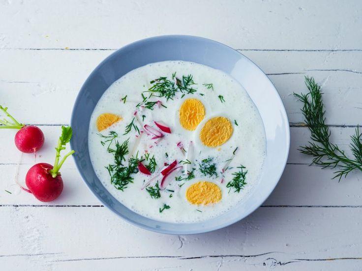 Kalte Sommersuppe mit Joghurt, Radieschen, Dill und hartgekochten Eiern - Im Sommer neigt man zu leichter Kost, schweres Essen wird eher gemieden. Erfrischend und leicht sättigend ist diese Sommersuppe, die vor allem von den frischen Kräutern lebt.